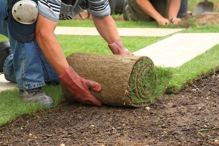 Sod for Sale West Palm Beach | Why You Should Install a Sod Lawn