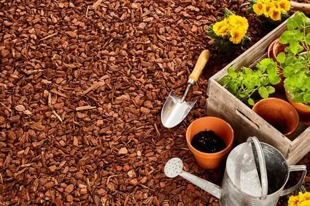 The Benefits of Adding Mulch in Your Garden